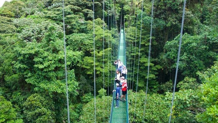 Viajes a Guatemala, Bosque Nuboso Monteverde.jpg