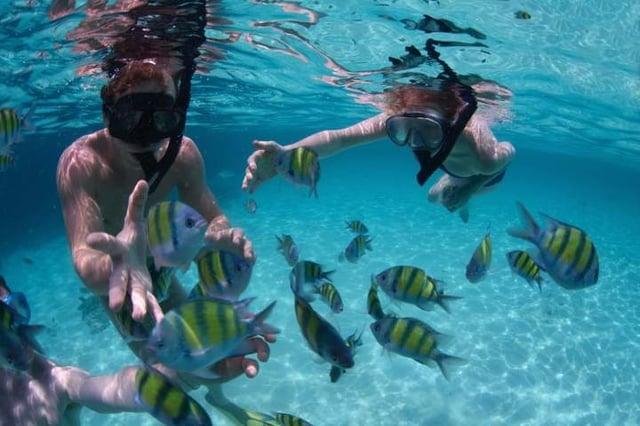 Vuelos a Belice Snorkel Cayo San Pedro