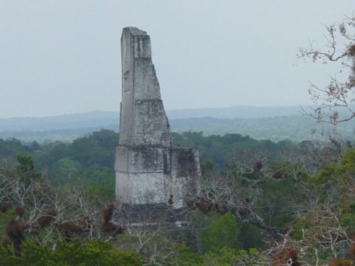 Vuelos a Tikal Templo III tikal.jpg