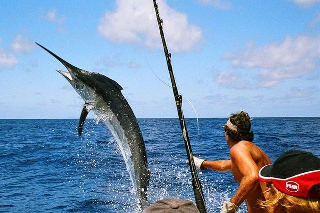 Vuelos a Belice pesca deportiva.jpg