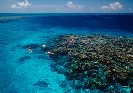 Vuelos a Belice Cayo Ambergris Belice.png