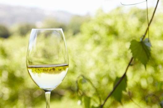 Vuelos a Belice, Vino blanco semi seco.jpg