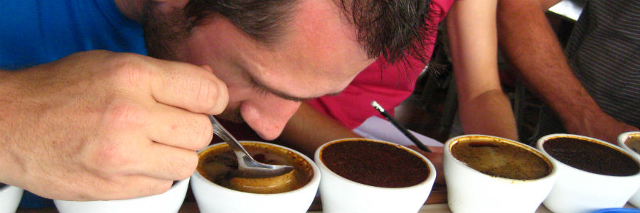 Vuelos a Belice, Sabor del café.jpg
