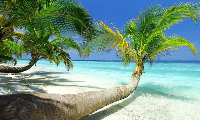 Vuelos a roatan, Jamaica.jpg