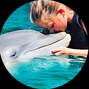 Nadar con delfines.png